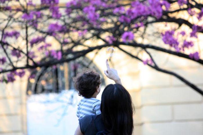 Era a primeira vez que eu ia a Belo Horizonte, e essa praça talvez tenha sido meu lugar preferido. Chamam de Praça da Liberdade, mas dependendo da época do ano pode muito bem ser chamada de Praça das Flores. Eu lembro que nesse dia passei uma tarde inteira andando por ela, repetindo a mesma volta, observando as pessoas diferentes que ficavam ali um pouquinho. Foi numa dessas que vi essa mãe chegar com seu filhinho, que mal tinha começado a andar, que parecia tímido e ao mesmo tempo extremamente curioso. Ela pegou um potinho de fazer bolha de sabão e começou a brincar com ele, e não demorou muito para outras crianças se aproximarem e pedirem para brincar também. Contudo, o tempo todo, mesmo rodeados de outras crianças e pessoas, esses dois pareciam tão cúmplices, tão ligados um ao outro, que eu não consegui tirar os olhos deles. Acho que foi a primeira vez que realmente senti, em outros, os laços invisíveis entre uma mãe e um filho. Aquela coisa inexplicável que a gente acha que só sente com nossas próprias mães, sabe? Eu consegui sentir entre eles também. Desde então, a imagem desses dois brincando naquela praça se tornou uma das cenas mais bonitas que eu guardo na minha memória.